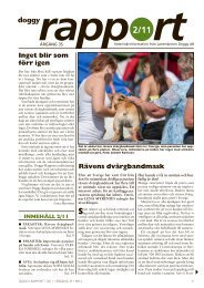 Doggy Rapport 2 - 2011