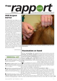Doggy-Rapport nr 2-07.qxd