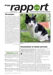 Doggy Rapport 3 - 2010