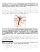 TRATAMIENTO DEL DOLOR  - Page 6