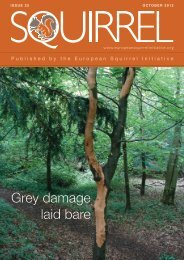 to view October 2012 Issue 25 - European Squirrel Initiative