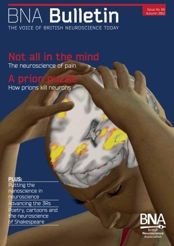 Issue 66 - British Neuroscience Association