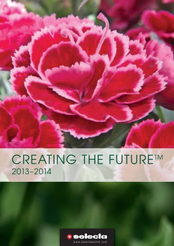 Creating the Future 2013 - 2014