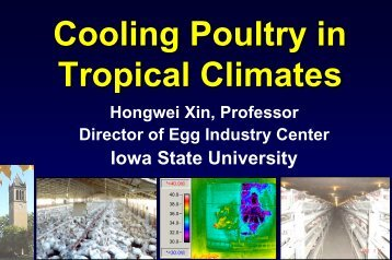 Cooling Poultry in Tropical Climates - Iowa State University