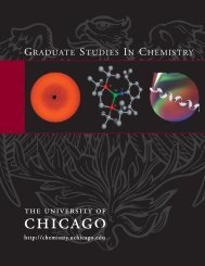 whole brochure (26 mb file) - Chemistry - University of Chicago