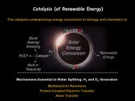Energy Conversion at the Molecular Level - Image