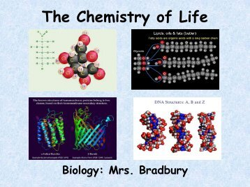 The Chemistry of Life - Lynn English Faculty Websites