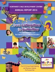 Annual Report 2013 - nwcdc.org