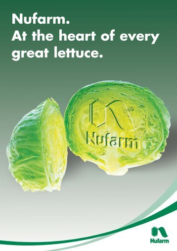 At the Heart of Every Lettuce - Pest Genie