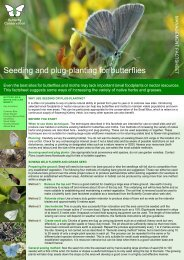 Seeding Plug Planting FINAL - Butterfly Conservation Warwickshire