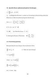 Vorlesung 14: Spezielle lineare phänomenologische Gleichungen