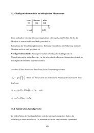 Vorlesung 15: Gleichgewichtszustände an biologischen Membranen