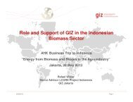 Role and Support of GIZ in the Indonesian Biomass Sector - AHKs