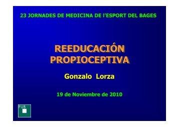 reeducacion propioceptiva - 25 Jornades de Medicina de l'Esport ...
