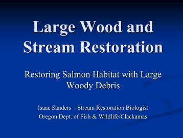 Power Point about Large Woody Debris