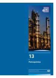 Capitulo 13 - Cámara Argentina del Gas Natural Comprimido