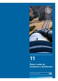 Capitulo 11 - Cámara Argentina del Gas Natural Comprimido