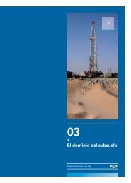 Capitulo 3 - Cámara Argentina del Gas Natural Comprimido