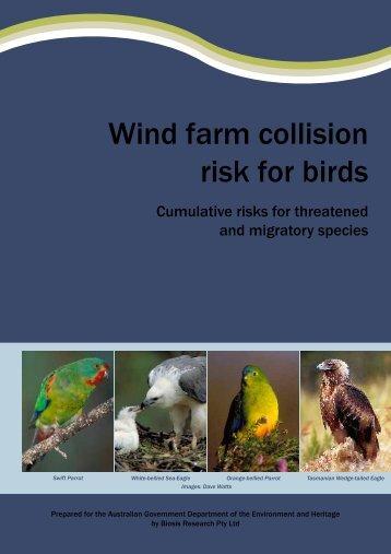 wind-farm-bird-risk