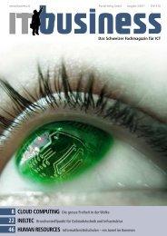IT business 3/2011