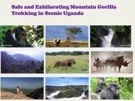 Trekking in Scenic Uganda