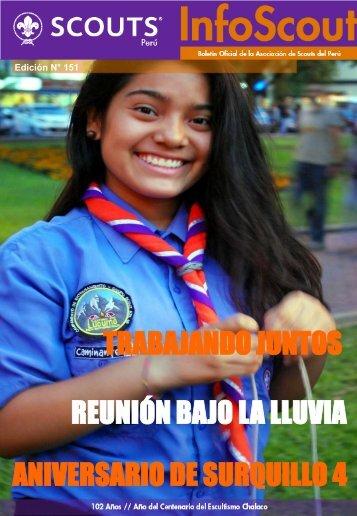 trabajando juntos - Scouts del Perú