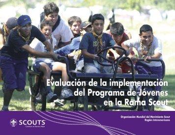 Evaluación de la implementación del Programa de Jóvenes en la ...