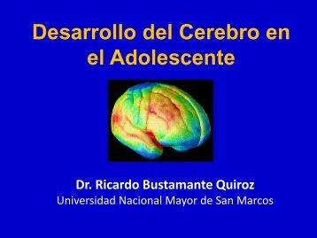 Desarrollo del Cerebro en el Adolescente - codajic