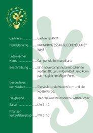Blühende Zimmerpflanzen - Floradania.dk