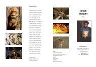 Info-Flyer über die Faltkunst von Junior Jacquet (pdf-file) - Origami ...
