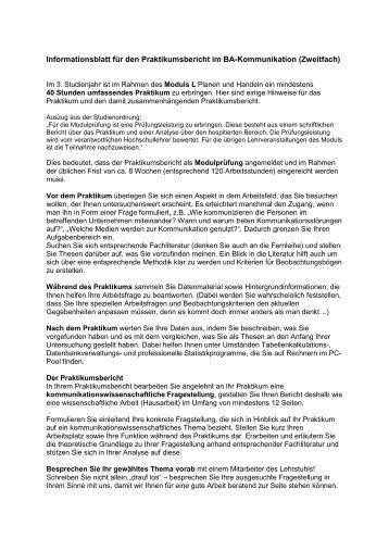 Informationsblatt Praktikumsbericht