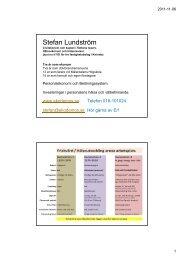 Dokumentation - föreläsningens bilder i pdf-format