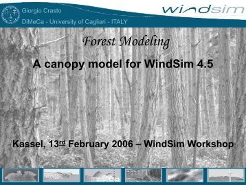 A canopy model for WindSim 4.5