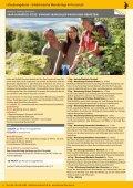 Pauschalangebote 2012 - Seite 4