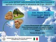 Linee guida MIPAAF nella promozione della filiera forestale e ... - Fiper