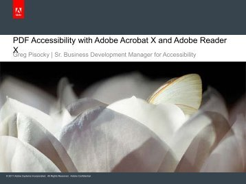 Accessibility with Adobe Acrobat X and Adobe Reader [PDF]
