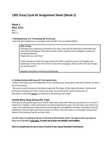 Assignment essay