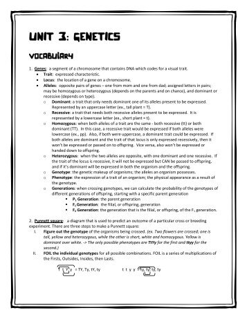 Genetics Unit Codominance Worksheet Answers - The Best and Most ...