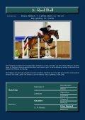 2004 - ESI II. Sportpferde Katalog (.pdf, 5,0 - Seite 6