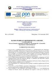 PON 2010-2011 - Bando aziende C6 - IS Manlio Rossi Doria