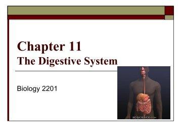 nelson biology 11 chapter 1 pdf