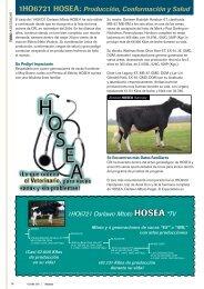 1Ho6721 HoSEA: Producción, Conformación y Salud