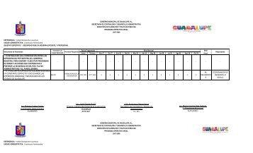 Programas operativos anual 2007-2008 con recurso ... - Guadalupe