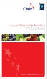 Industrie Chilienne Des Fruits Frais - Fruits from Chile