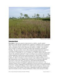 Depression Marsh - Florida Natural Areas Inventory
