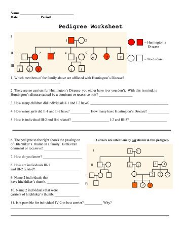 Pedigree Worksheet Answers