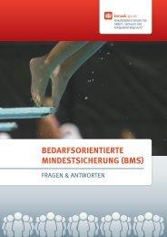 Bedarfsorientierte Mindestsicherung (BMs) - Bundesministerium für ...