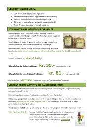 verdens bedste advents- og pakkekalendertips 20 ... - HelseBasen
