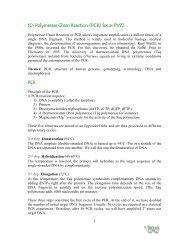Polymerase Chain Reaction (PCR) locus PV92 - BiOutils