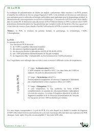 La PCR - BiOutils - Université de Genève